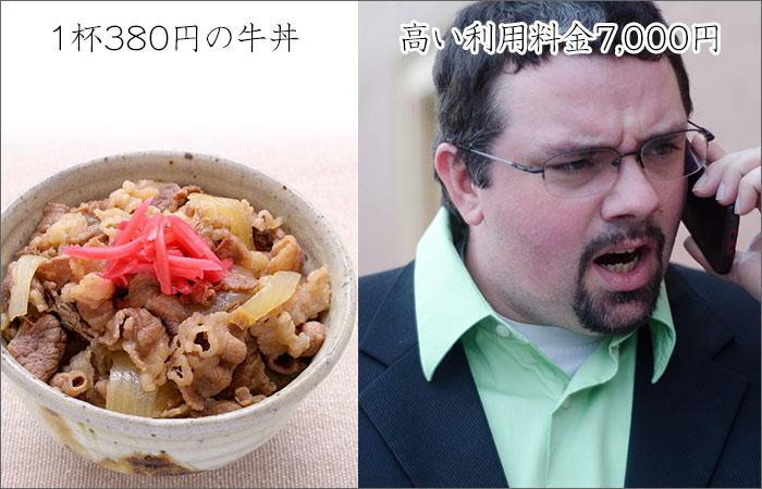 1杯380円の牛丼。高い利用料金7000円